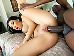 monstersofcock: Asa Akira looking for black cock